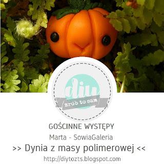 https://diytozts.blogspot.com/2018/10/32-goscinne-wystepy-marta-sowiagaleria.html