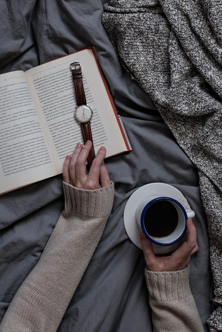 planes-frio-sofa-manta-libro-cafe