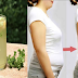 Lemon and Parsley Diet Juice: How To Lose Belly Fat In Just 3 Days