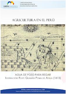 Agricultura en el Perú | Agua de pozo para regar