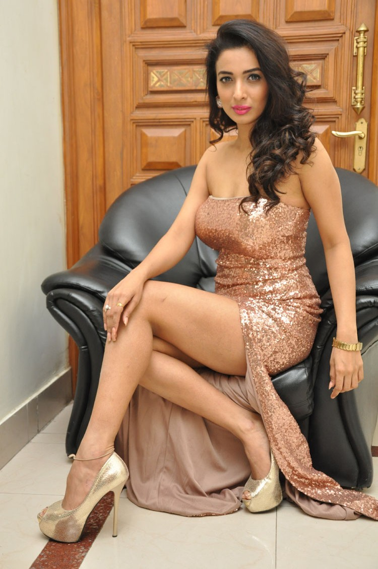 Heena Panchal sizzling at Thikka audio-HQ-Photo-16
