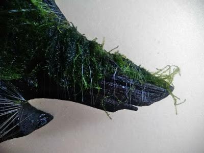 流木に密に釣り糸を巻いていく。