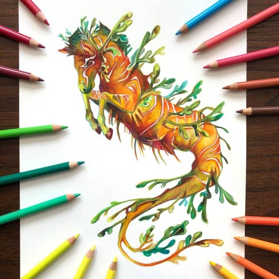 05-Leafy-Sea-Dragon-Zebra-Katy-Lipscomb-www-designstack-co