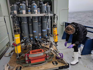 Photo of a large oceanographic instrument and a woman inspecting the tubing attached to the instrument. The instrument is a bit taller than a human and contains 24 gray bottles. The woman has a tube attached to a bottle.