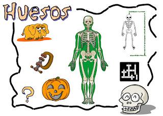 http://www3.gobiernodecanarias.org/medusa/contenidosdigitales/programas/Conocimiento/Esqueleto/intro.swf