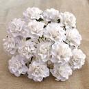 http://www.stonogi.pl/kwiatki-papierowe-white-tuscany-roses-saa446-p-19053.html