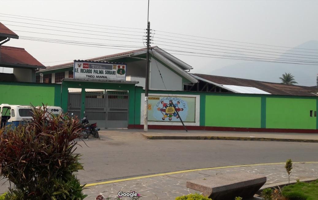 Colegio 32483 RICARDO PALMA SORIANO - Tingo María