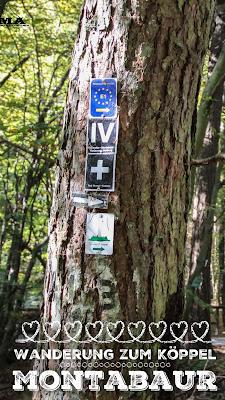 Rundwanderung Wanderung Westerwald Wandern Rund um den Köppel Montabaur Traumpfad Premiumweg Best Mountain Artists Outdoor Blog wandern Rheinland