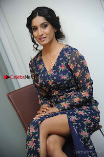 Kannada Actress Krushi Stills in Floral Blue Dress at IRA Movie Press Meet  0009.jpg