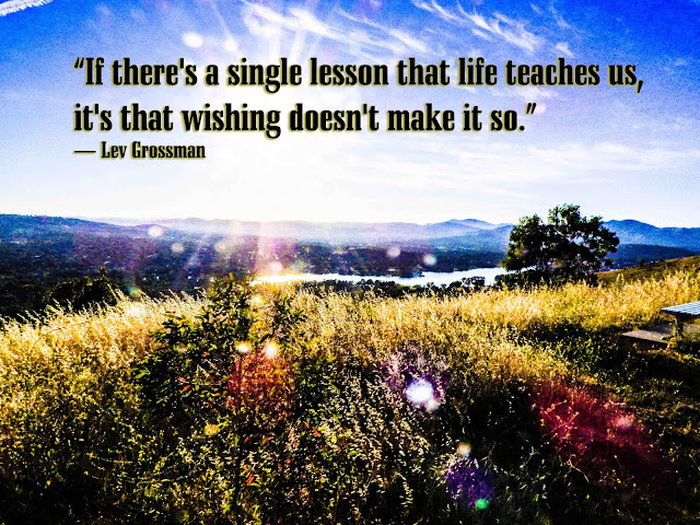 """If there's a single lesson that life teaches us, it's that wishing doesn't make it so"" - Lev Grossman"
