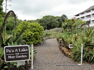 Moir Cacti Gardens at Kiahuna Plantation in Poipu, Kauai, Hawaii
