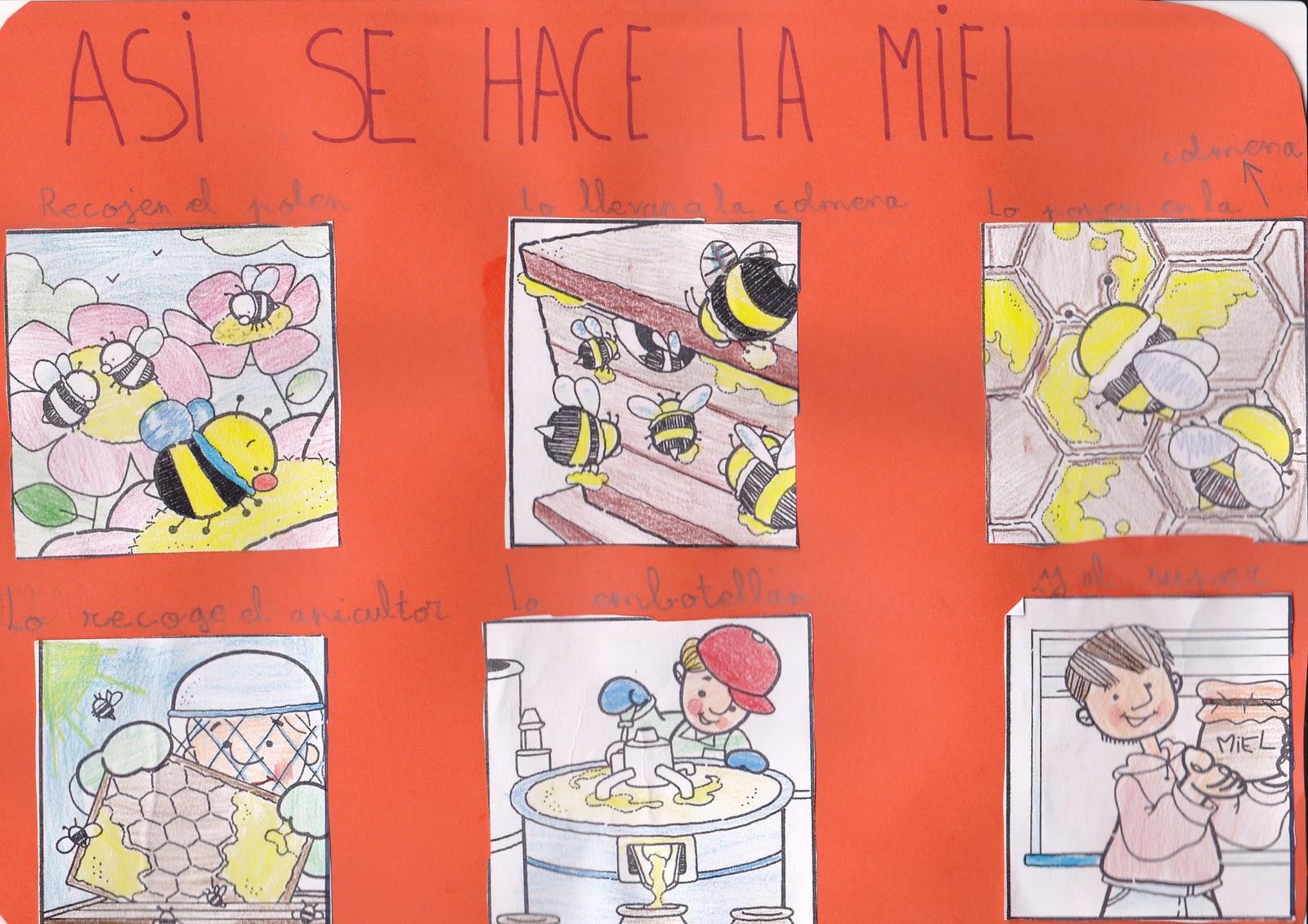 Ceip El Zargal Second Grade Asi Se Hace La Miel Rafael