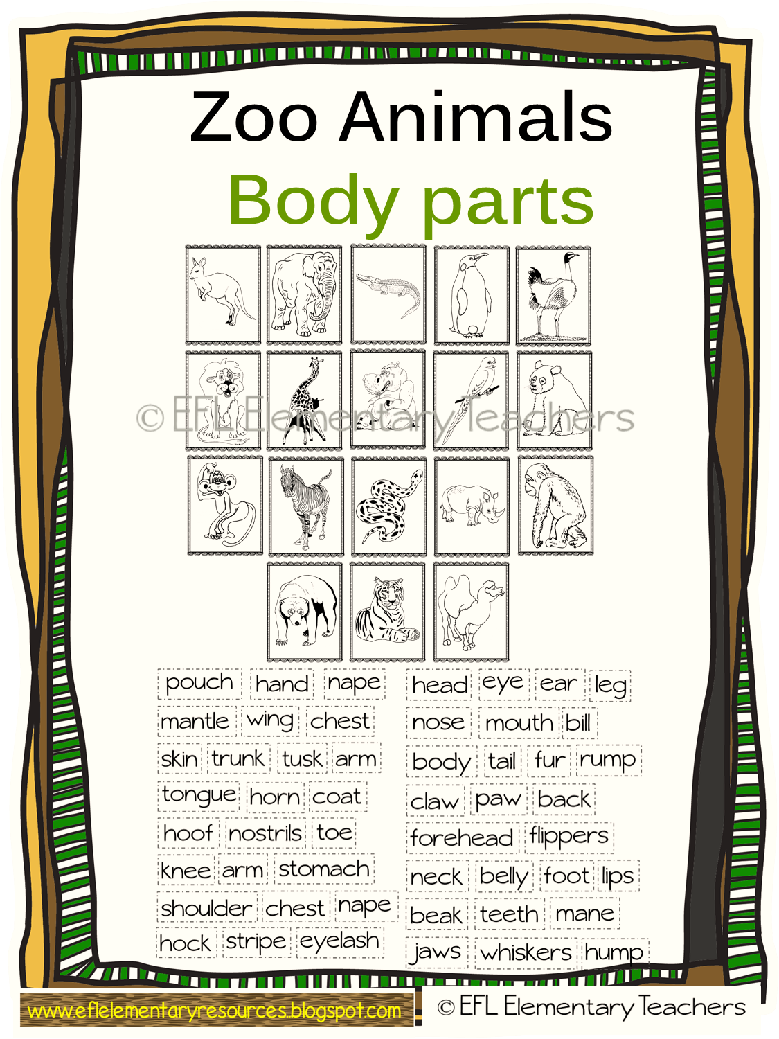 Efl Elementary Teachers Zoo Animals Have A Body