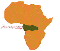 The Congo basin is the 2nd largest rainforest in the world