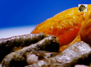 دجاج محشي بورق العنب (اليالنجي)