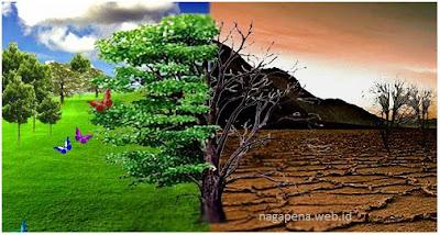Efek penggunaan pestisida bagi lingkungan