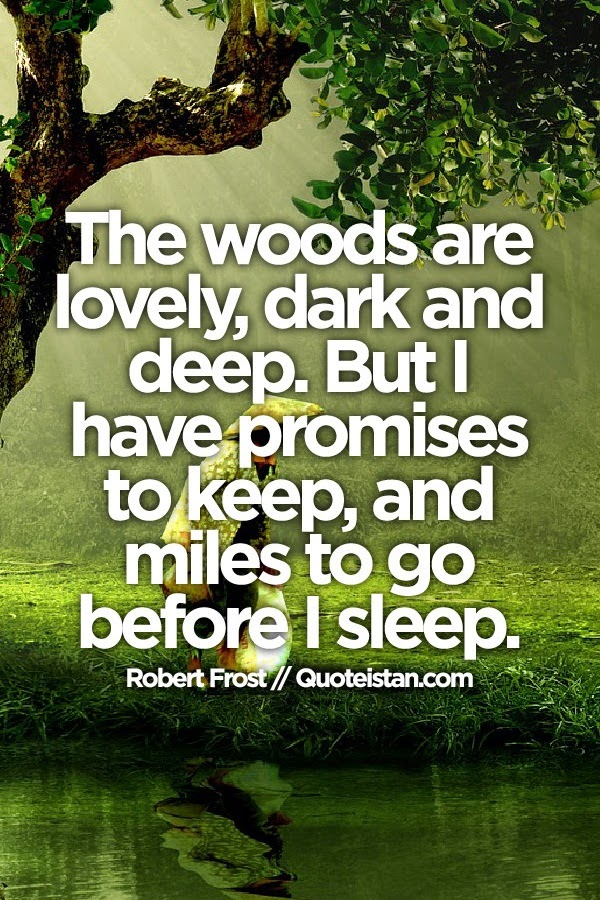 The Woods Are Lovely Dark And Deep But I Have Promises To Keep