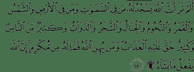 Surat Al Hajj ayat 18