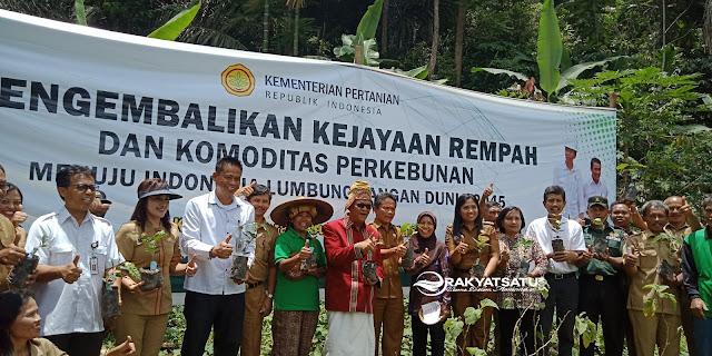 Bersama Petani, Kaban Litbang Pertanian dan Nico Tanam Bibit Kopi Unggul di Manggau'