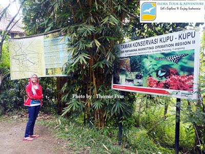 Taman Kupu-kupu Gita Persada  Lampung elora tour & adventure