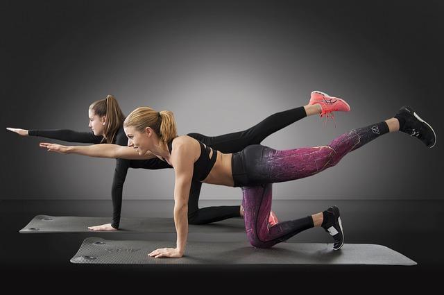 ecdysterone arginine aupplement for muscles workout