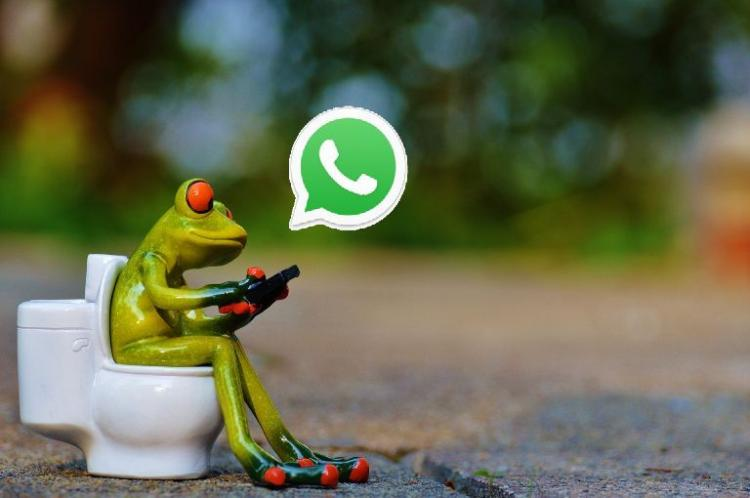 WhatsApp letting your friends to choose you.