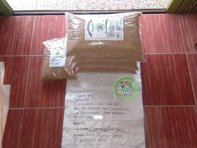 Benih pesanan SUYONO Semarang, Jateng  (Sebelum Packing)