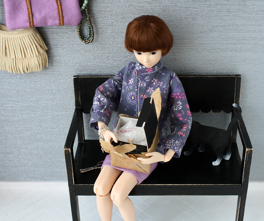momoko doll, doll collection, doll diorama, fashion doll, collectible, miniatures