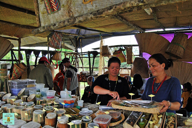 Food Festival en las Kelabit Highlands, Borneo (Malaysia)