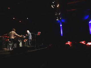 12.11.2016 Wiesbaden - Schlachthof: Swans
