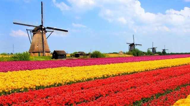 Julukan Negara Belanda