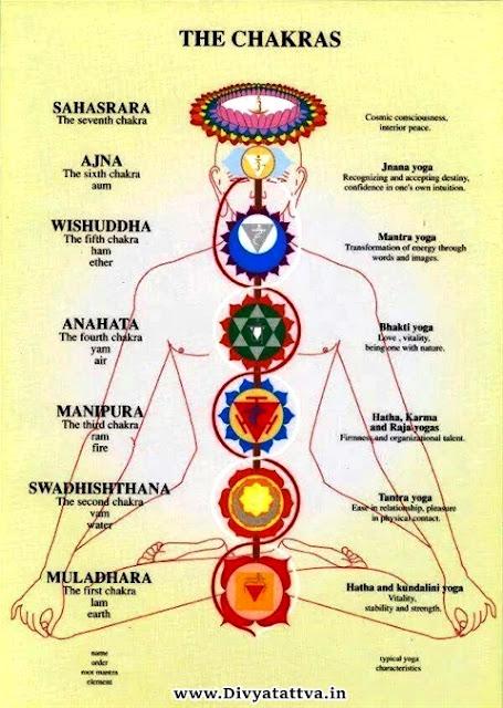 prana, kundalini, chakras, kriyayoga, tantra, yoga, yogi, rohit anand, divyatattva