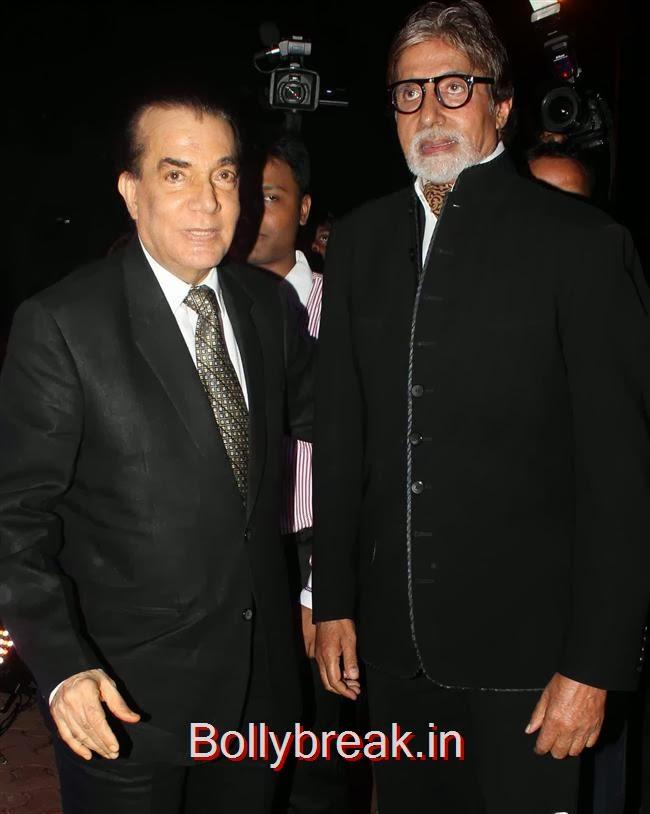Nari Hira and Amitabh Bachchan, Hot Babes at Society Young Achievers Awards 2013