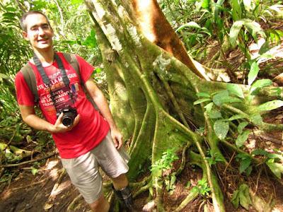 Selva Tropical en Tortuguero