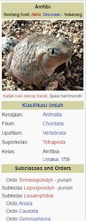 hewan vetebrata, ciri morfologi hewan vetebrata