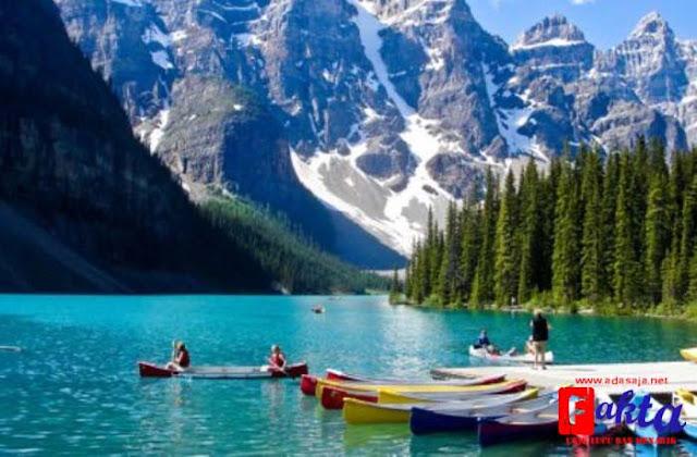 Danau Peyto di kanada danau unik dengan bentuk seperti beruang