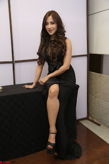 Angela Krislinzki in Transparent Black Gown at Rogue Movie Teaser Launch 1st March 2017 076.JPG