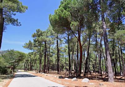 Centro de Naturaleza InsectPark (San Lorenzo de El Escorial)