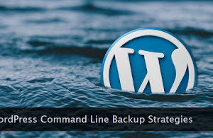 WordPress logo drowning in water.
