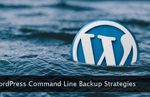 WordPress logo drowning in water.
