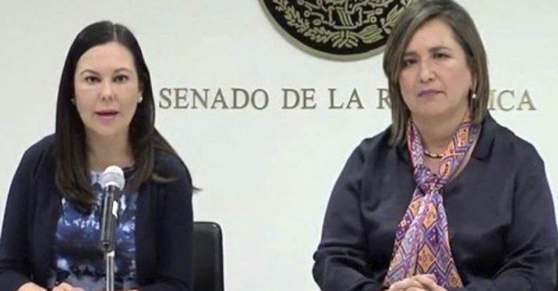 """Panista dice a AMLO ocasionar """"desajuste"""" a los funcionarios con hijos en escuelas privadas, ante baja de sueldo."""