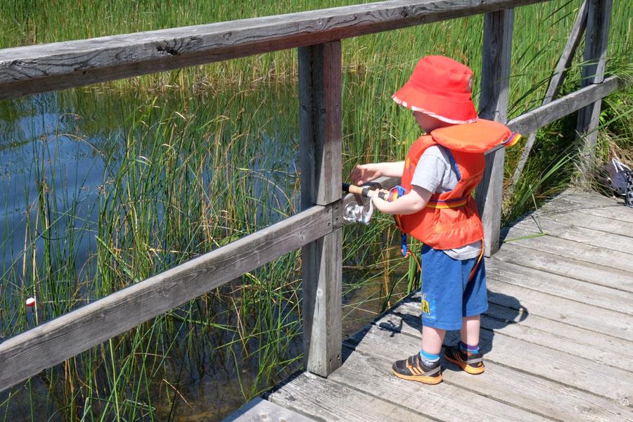 Awenda Provincial park fishing