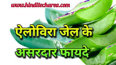 एलोवेरा जैल के कई असरदार फायदे (health-benefits-of-aloe-vera-jel-in-hindi)
