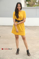 Actress Poojitha Stills in Yellow Short Dress at Darshakudu Movie Teaser Launch .COM 0328.JPG