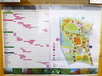 深北緑地花ごよみ 園内花マップ