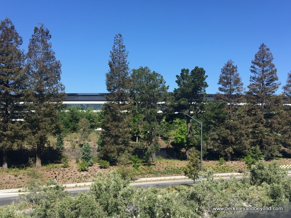 Apple Park campus seen from Apple Park Visitor Center in Cupertino, California