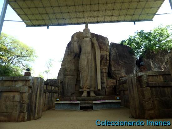 Buda Avukana