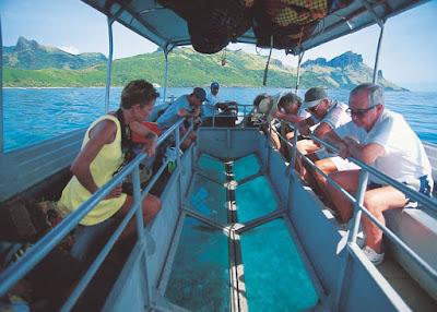 رحلة الجلاس بوت فى الغردقة ، استمتع بالشعاب المرجانيه فى البحر الاحمر