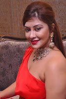 Payal Ghosh Looks Stunning in Red Half Shoulder Gown 006.JPG