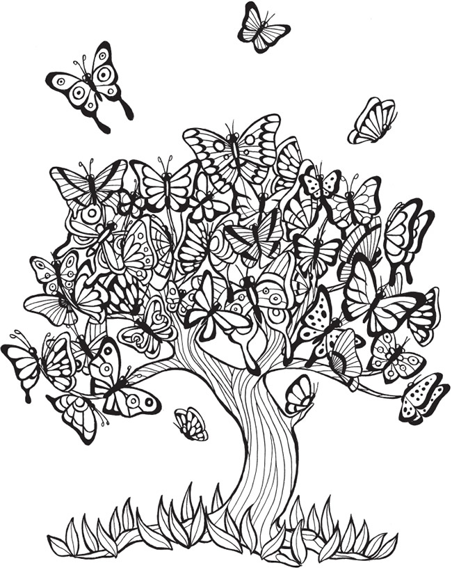 EXPOSE HOMELESSNESS: BUTTERFLY TREE